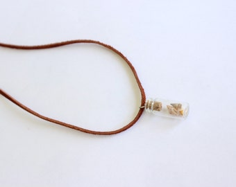Seashells in a Bottle Long Leather Chord Necklace or Gold Chain