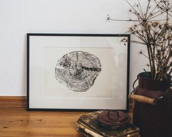 Woodprint Fichte #1 / Spruce #1