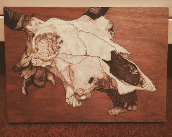 Cow Skull Woodburning