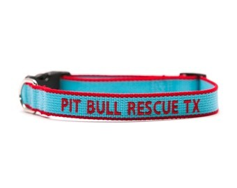ECO Friendly Personalized Embroidered Dog Collar - Light Blue And Red