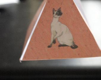 A Cat Hanging Pyamid