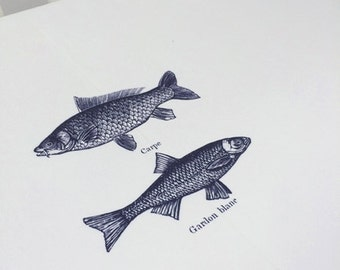 Fish Tablecloth. Vintage fish illustration on white background with grey margins. Holiday tablecloth