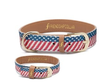 The Presidential Dog - Dog FriendshipCollar and matching friendship bracelet
