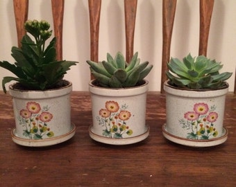 Small Vintage Flower Pot
