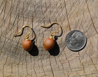 Willow Oak Acorn Earrings #2