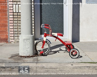 Chained Tricycle - Venice, CA  2016