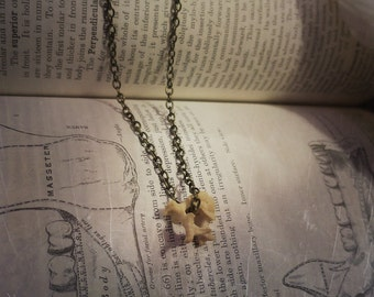 Raccoon Vertebrae Necklace with Brass Chain, Bone Jewelry, Bone Necklace, Curiosities, Oddities, Oddities Necklace, Vulture Culture