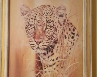Phil Prentice Leopard print with glass frame -vintage
