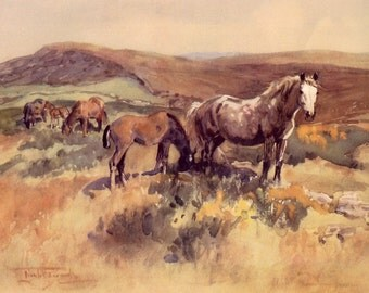 1948 horse print welsh mountain mare and foals by lionel edwards