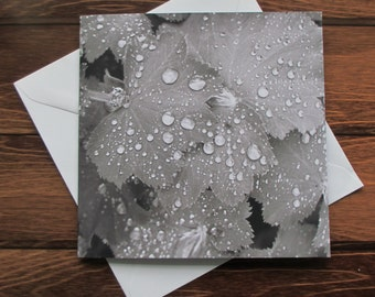 Droplets Greetings card 14cm square Black and White