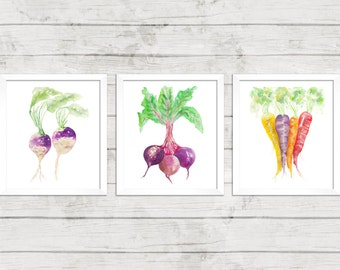 Three Veggies Series Set in 8x10. Kitchen Art. Beets Turnip Carrots. Vegetable Watercolor. Housewarming Gift