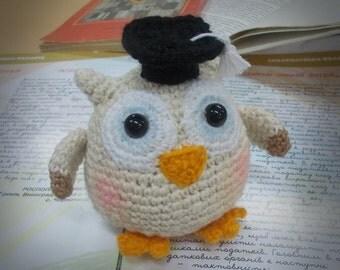 Little Wise Owl Crochet Toy