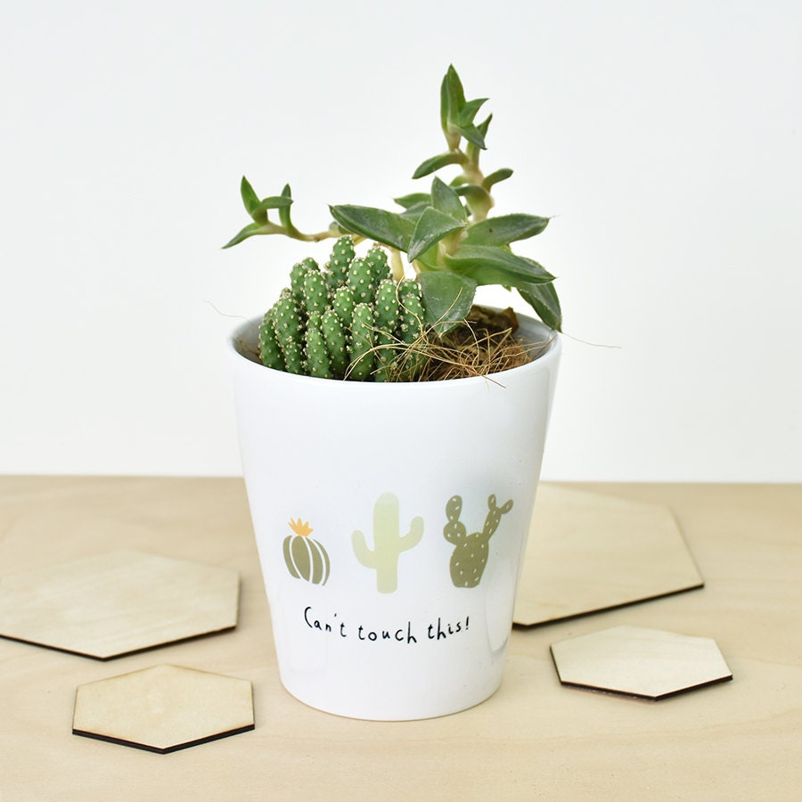 can 39 t touch this 39 cactus plant pot cactus print. Black Bedroom Furniture Sets. Home Design Ideas
