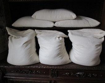 Organic Buckwheat Pillow~ Handmade In Vermont