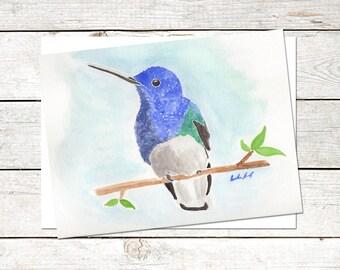 Hummingbird Note Cards, 6 x 4.5, Original Art, Watercolor Painting, Blank Note Cards, Nature Cards, Great Jacobin Hummingbird Art