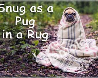 Pug Dog Funny Fridge Magnet Gift - Pug in a Rug