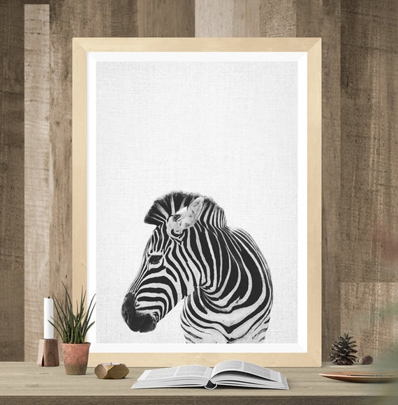 Zebra Print Zebra Photo Zebra Wall Art Savannah Animal