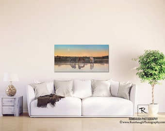 Wild horse Gallery Canvas-'Morning Light'