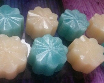 Ocean breeze scented soy wax melts. pack of 4