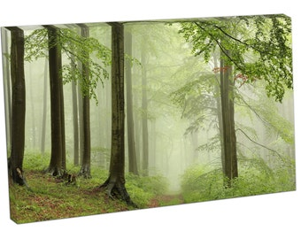 FO0395 Print On Canvas Spring deciduous FOREST FOG Landscape ART