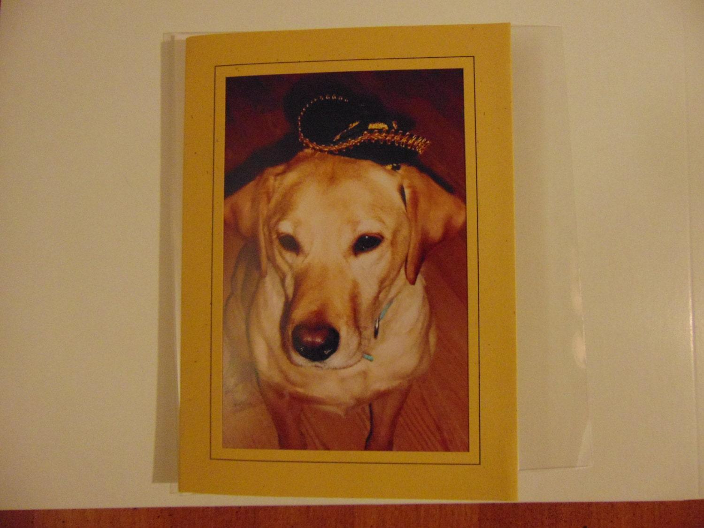 lustige geburtstagskarte mit hund komplimente von chichisalutations. Black Bedroom Furniture Sets. Home Design Ideas