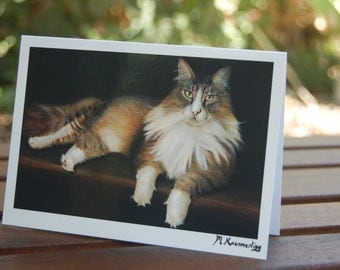 Oil Painting Cat Card - Tabby Maine Coon