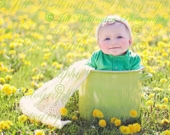 DIGITAL Spring Background, backdrop for babies, infants, newborns, toddlers, kids, children, photographers, photography: Dandelion Bucket