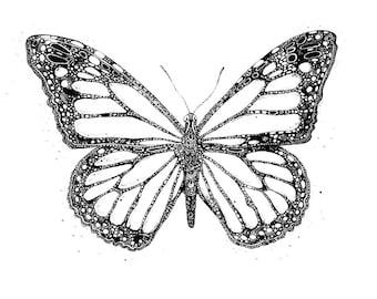 Art print 'Monarch Butterfly'