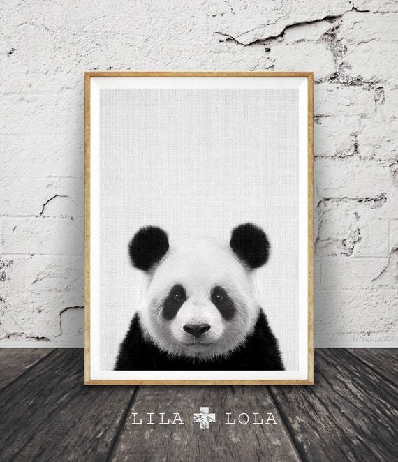 Panda print nursery wall art decor black and white animal for Panda bear decor
