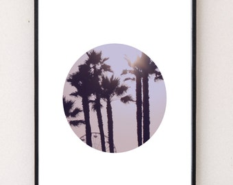 Palm Circle Print, Beach Art, Palm Photography, Palm Wall Art,  Beach Prints, Modern Art, White Decor, Minimalist Art