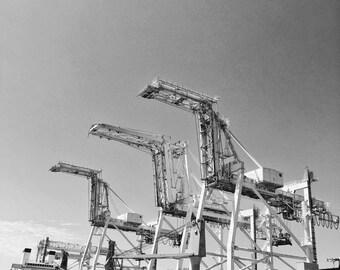 Photo of a Crane