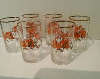 Vintage Orange/Brown/Flowers  Glasses x6