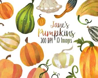 Watercolor Pumpkins Clipart - Fall Pumpkin Clipart - Instant Download - Faux Watercolor Fall Pumpkins and Gourds