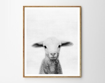 Lamb print, Nursery, Animal, Kids room, Modern art, Wall decor, Digital art, Printable, Digital poster Instant Download 8x10, 11x14, 16x20