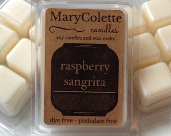Raspberry Sangrita Wax Melts | Eco Friendly Scented Wax Melt | Scented Soy Melts | Unique Wax Cubes | Soy Wax Tart