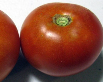Heirloom Tomato- MOUNTAIN PRINCESS- 45 to 68 day -red -Determinate - 25 seeds