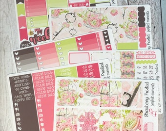 Perfect Moments---- Weekly Planner Kit ---- {Includes 210+ Stickers}