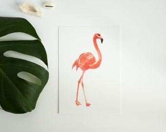 Postcard flamingo