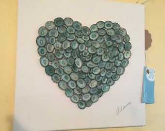 Limpet heart picture