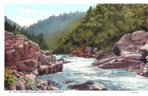 Vintage Postcard ~ in the Feather River Gorge California ~ Feather River Canyon ~ Historic California ~ California epherma ~