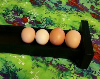 Sloped Egg Rack - Up to 10 Eggs Black