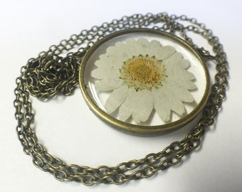 Resin Jewelry – Resin Necklace – Real Daisy Necklace - Resin Pendant - Pressed Flower Resin Jewelry – Real Flower Resin Jewelry