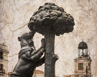 Picture of the statue of the bear and the Madroño Madrid n ° 01