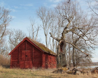 Barn Digital Photo - Barn Photography - Red Barn - Old Barn - Barn Photo - Ruin - Ruin Photo - Digital Photo - Digital Download - Home Decor