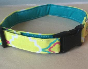 Pink, Blue, & Yellow Girly Dog Collar
