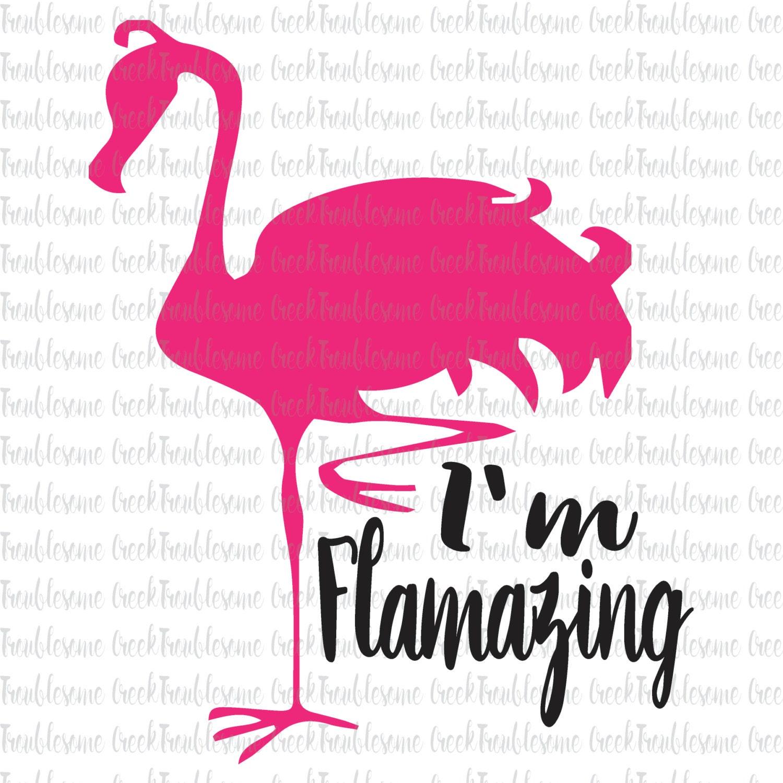 Download Flamazing Flamingo Summer SVG Cut file Silhouette Cricut