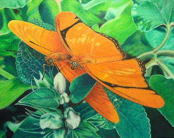 """8""""x11"""" Colored pencil drawing of 2 butterflies"""