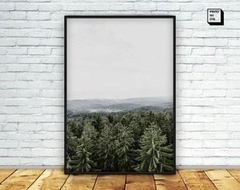 scandinavian print, nature photography, forest photography , scandinavian forest print,  nordic wall art, woodland print, winter print decor