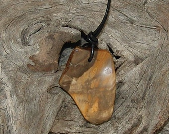 Free form petrified wood pendant