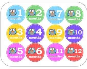 Baby Monthly Age Milestone Photo Stickers for Babygro, Vest or Onesie - Owls design